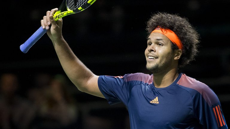 Tsonga Wins Tennis Final