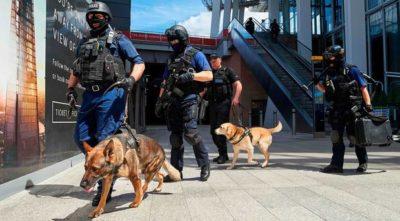 12 Arrested in Barking after London Attacks