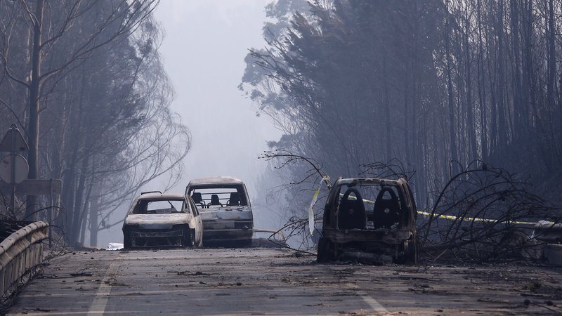 Lightning cause Forest Fire Portugal-Death Toll at 62