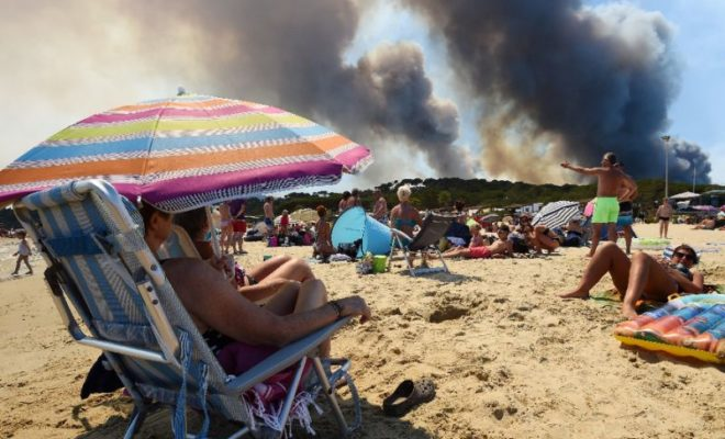Forest Fires in Southern France Now Under Control