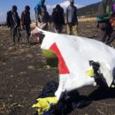 157 Victims of A Plane Crash in Ethiopia, No Survivors